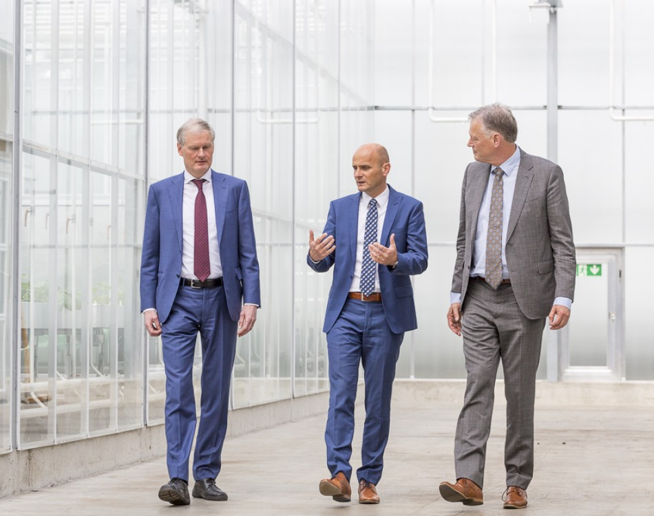 Rijk Zwaan global management